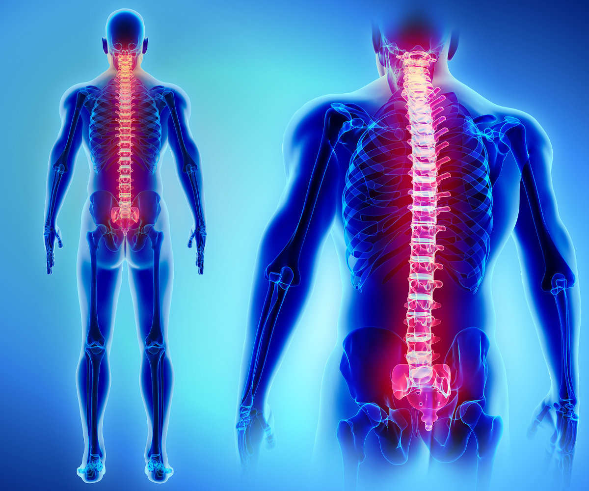 Paralysis & Spinal Injuries